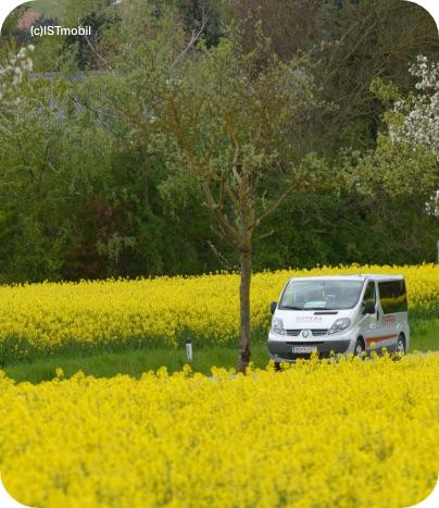 ISTmobil Taxi fährt über Landstraße zwischen blühenden Rapsfeldern