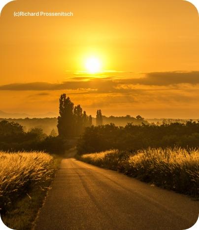 Landstraße zwischen Feldern im Sonnenuntergang